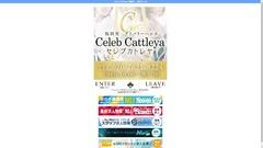 Celeb Cattleya